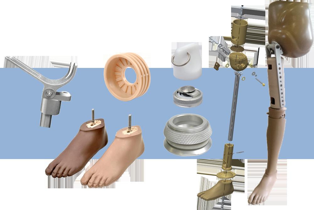 prothèse memb inf